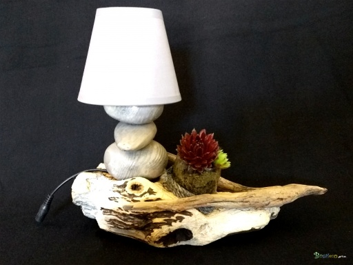 https://www.bogaleco.com / Lamp and succulent